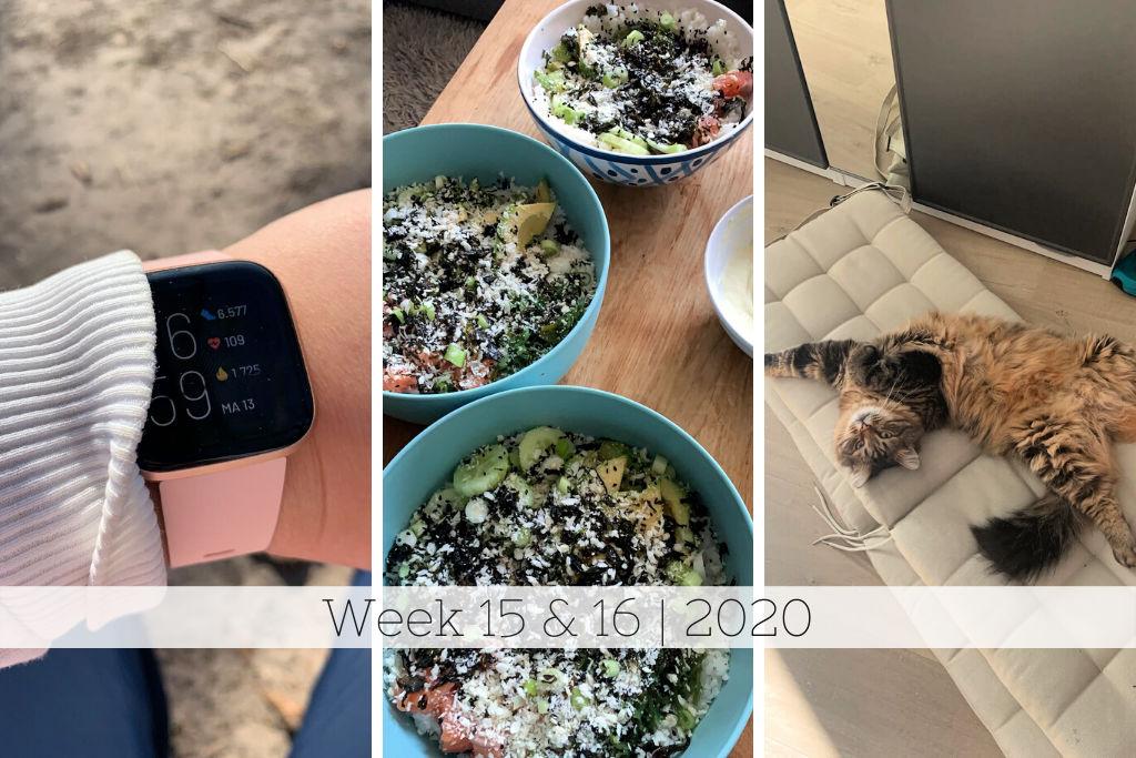 Week 15 & 16 | Veel wandelen, lekker eten & James